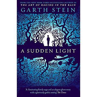 Una luz repentina por Garth Stein - libro 9780857205773