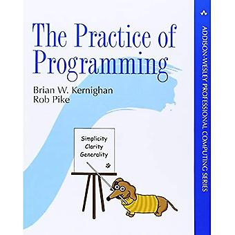 The Practice of Programming (Professional Computing)
