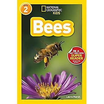 Las abejas (lectores geográficos nacionales: nivel 2)