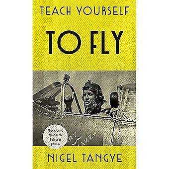 Teach Yourself To Fly