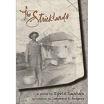 Sticklands: Ein Roman