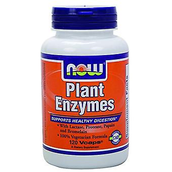 Now Plant Enzymes 120 Capsules (Vitamins & supplements , Enzymes)