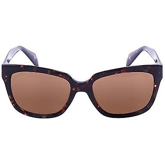 Ocean Santa Monica Sunglasses - Demy Brown/Brown