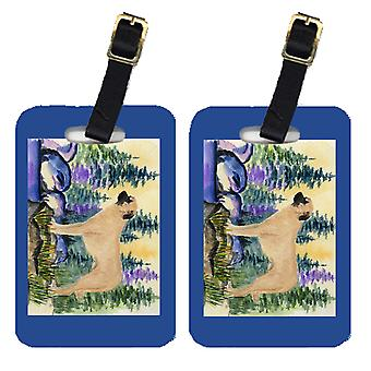 Carolines Treasures  SS8012BT Pair of 2 Anatolian Shepherd Luggage Tags