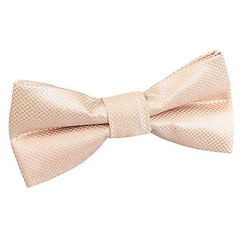 Champagne Solid Check Pre-Tied Bow Tie for Boys