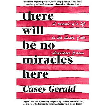 Es werden hier keine Wunder: Eine Abhandlung von der dunklen Seite des amerikanischen Traums