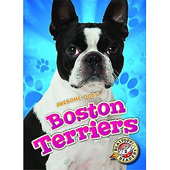 Boston Terriers (Awesome Dogs)