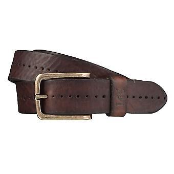 Lee belts men's belts leather belt Brown 3977