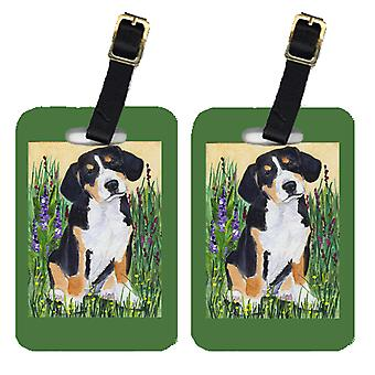 Carolines Treasures  SS8216BT Pair of 2 Entlebucher Mountain Dog Luggage Tags