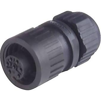 Hirschmann 934 125-100 CA 3 LD CA Series Mains Voltage Connector Nominal current (details): 10 A/DC, 16 A/AC. Number of
