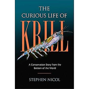 La vie curieuse du Krill