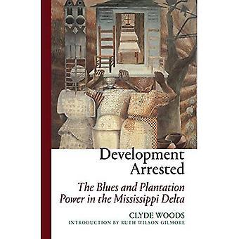 Utveckling greps: Blues och Plantation Power i Mississippi Delta