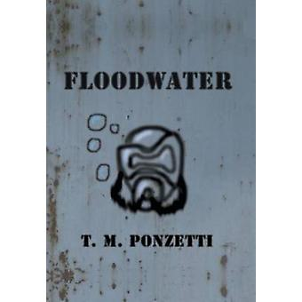 Floodwater by Ponzetti & T. M.