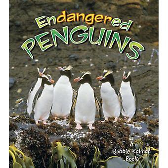 Endangered Penguins by Bobbie Kalman - 9780778719090 Book