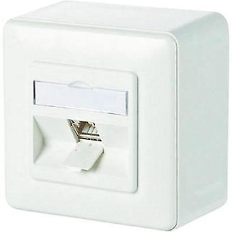 Network outlet Surface-mount CAT 6A 1 port Metz Connect Pure white