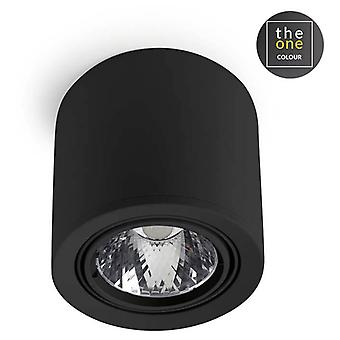LEDs C4 Plafón Exit 1xG53 100W Negro (Home, verlichting, opknoping lampen)