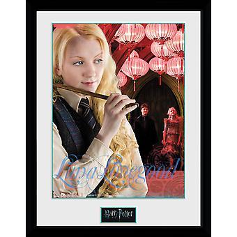 Harry Potter Luna Framed Collector Print 40x30cm
