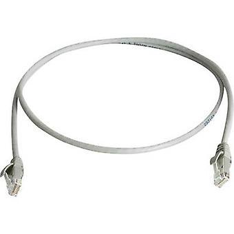Telegärtner RJ45 Networks Cable CAT 6 U/UTP 25 m Grey Flame-retardant, Halogen-free