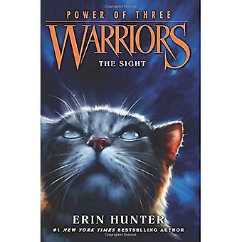 Guerreiros: Poder de três #1: A visão