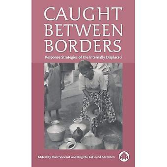 Caught Between Borders: Response Strategies of the Internally Displaced