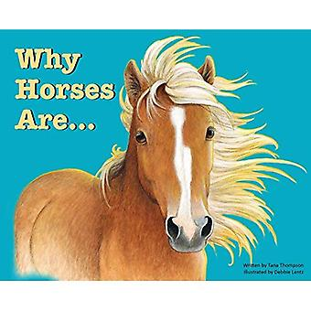 Why Horses Are