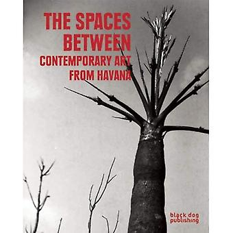 The Spaces Between: Contemporary Art from Havana