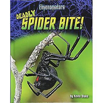 Deadly Spider Bite!