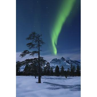 Moonlight and aurora over Nova Mountain Wilderness Troms Norway Poster Print