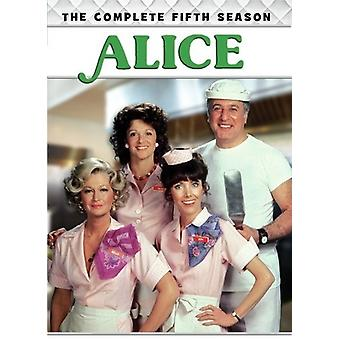 Alice: The Complete Fifth Season [DVD] USA import