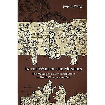In the Wake of the Mongols: The Making of a New Social Order in North China, 1200-1600 (Harvard-Yenching Institute Monograph Series)
