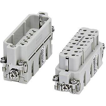 Socket inset HC-A 1677050 Phoenix Contact 16 + PE
