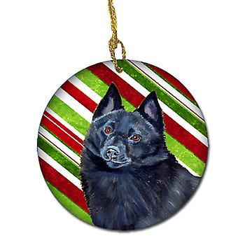 Schipperke Candy Cane Holiday Christmas Ceramic Ornament LH9249