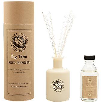 St Eval Candle Bay & Rosemary Reed Diffuser Set