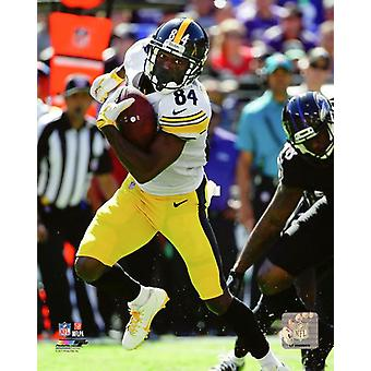 Antonio Brown 2017 Action Photo Print