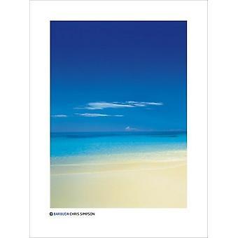 Barbuda plakat Print af Chris Simpson (24 x 32)
