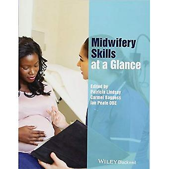 Midwifery Skills at a Glance (At a Glance (Nursing and Healthcare))
