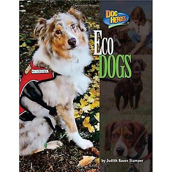 Eco Dogs