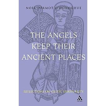 Angels Keep Their Ancient Places Reflections on Celtic Spirituality by ODonoghue & Noel