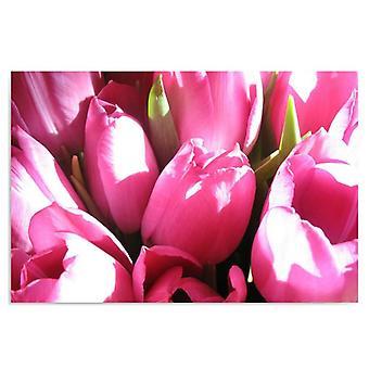 Deco Panel, pink tulips 2