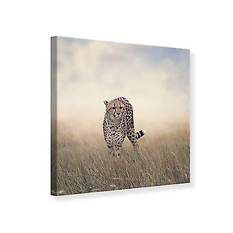 Canvas Print de Cheetah