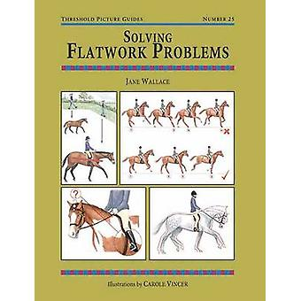 Solving Flatwork Problems by Jane Wallace - Carole Vincer - 978187208