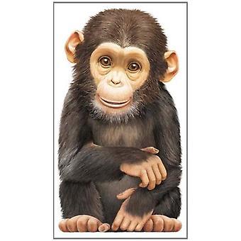 Kleine aap: Look at Me (Look at Me boeken