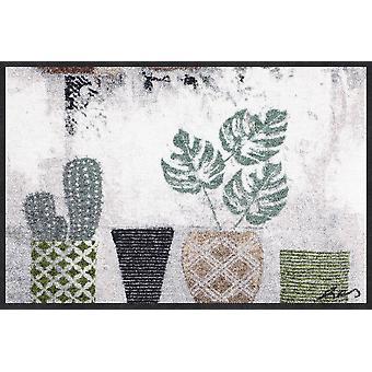 Salong lion dörrmatta kaktusar 50 x 75 cm. tvättbart smuts matta