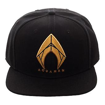 Aquaman Icon Embroidered Black Snapback Cap - One Size