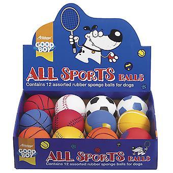 Bra pojke allt sport bollar 65mm (2,5