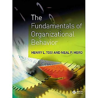 Fundamentals of Organizational Behavior: A Primer