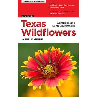 Fleurs sauvages de Texas