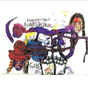 Animal Collective - græs USA importerer