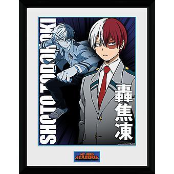 Mi héroe Academia Shoto Todoroki colector impresión