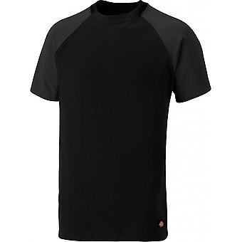 Dickies Mens Two Tone Short Raglan Sleeve Crew Neck T-Shirt